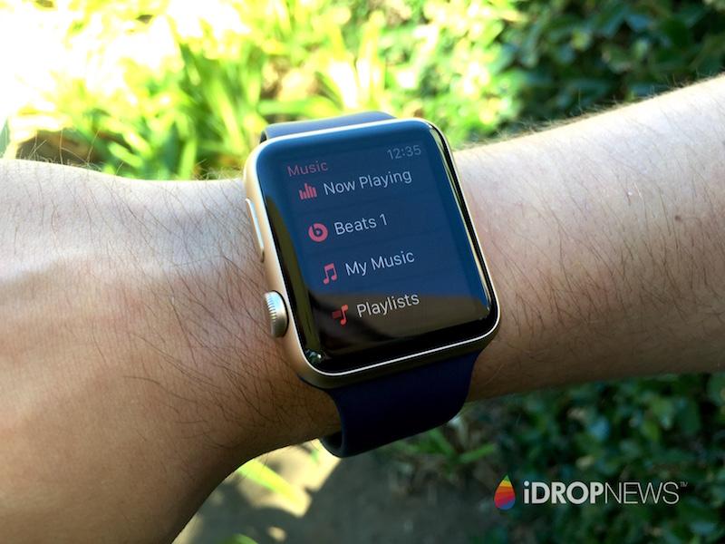 Eli's Apple Watch Music Bush iDrop