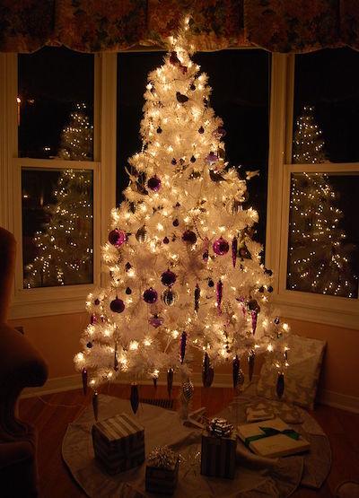 685px-White_christmas_tree